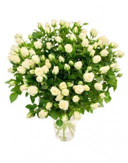 Bouquet of 101 white spray roses | 101 roses,lilies expensive