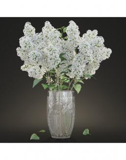 Bouquet of 51 white lilacs | Delivery and order flowers in Karaganda