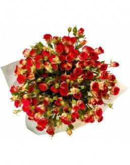 Bouquet of 101 red rose bushes | 101 roses,lilies expensive