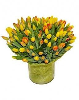 Bouquet 501 yellow tulips | 501 flowers flowers