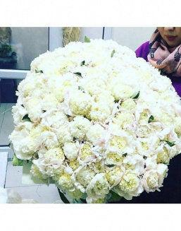 The dream embodiment a bouquet of 151 peonies | Delivery and order flowers in Karaganda