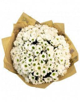 Summer field | Delivery and order flowers in Karaganda